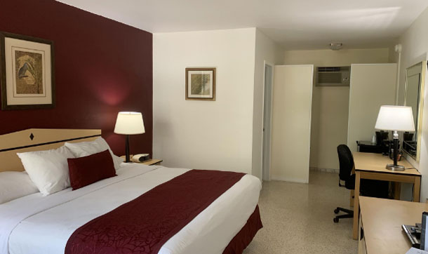 Alcazar Resort Gay Ft Lauderdale Hotels King Guestroom